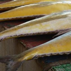 Muscat fish