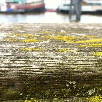 Thames bokeh