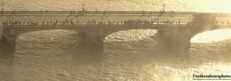 Bridge throng