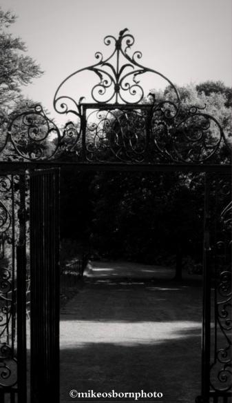Cannizaro gate