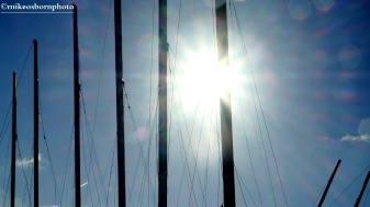 Dazzling masts