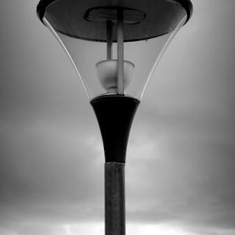 Sea lamp