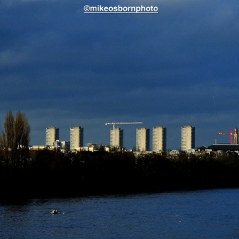 From the bridge, a cluster of tower blocks loom on the north Thames bank under a threatening sky. Time to head back.