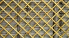 Fence frame