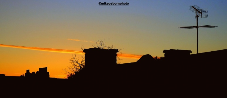 Scarred sundown