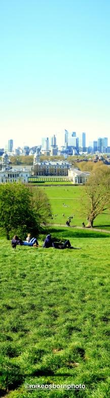Greenwich grass