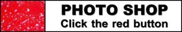The Photo Shop
