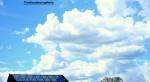 Glass, tree, sky