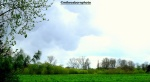 London countryside