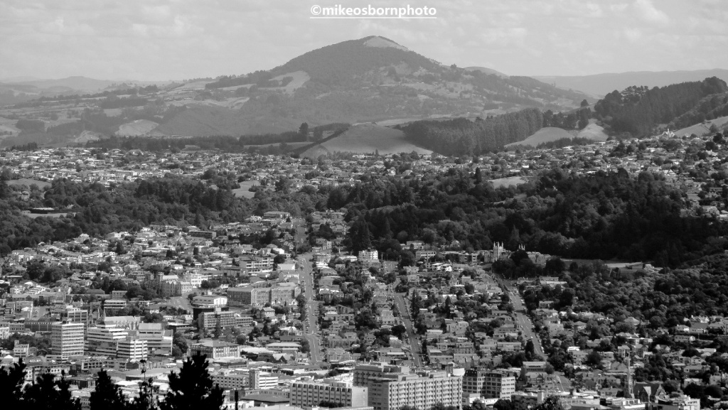 Dunedin, New Zealand from viewpoint