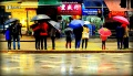 Pedestrians under umbrellas on Electric Avenue, Hong Kong