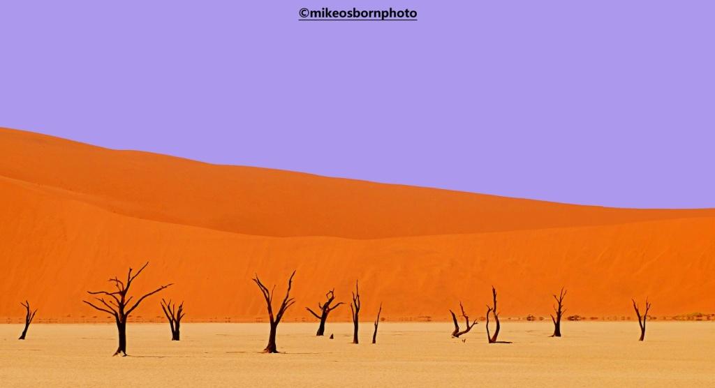 Dead trees of Namib Desert, Namibia