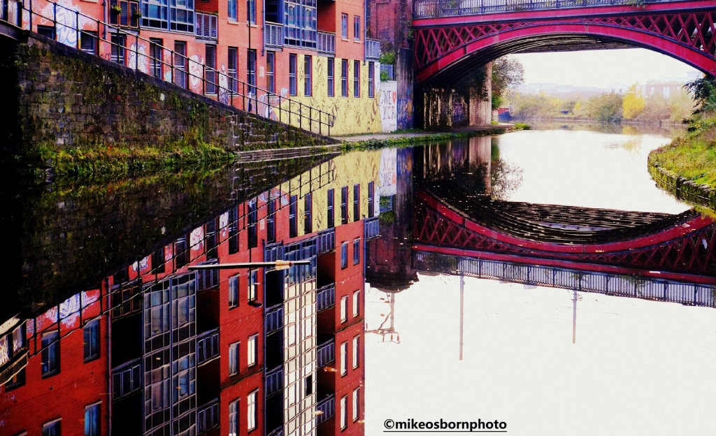 Reflections on Bridgewater Canal and bees in Manchester