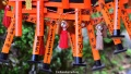 Little red torii gates at Fushimi Inari Taisha shrine, Kyoto, Japan