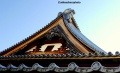 Buddhist temple roof, Nagano, Japan