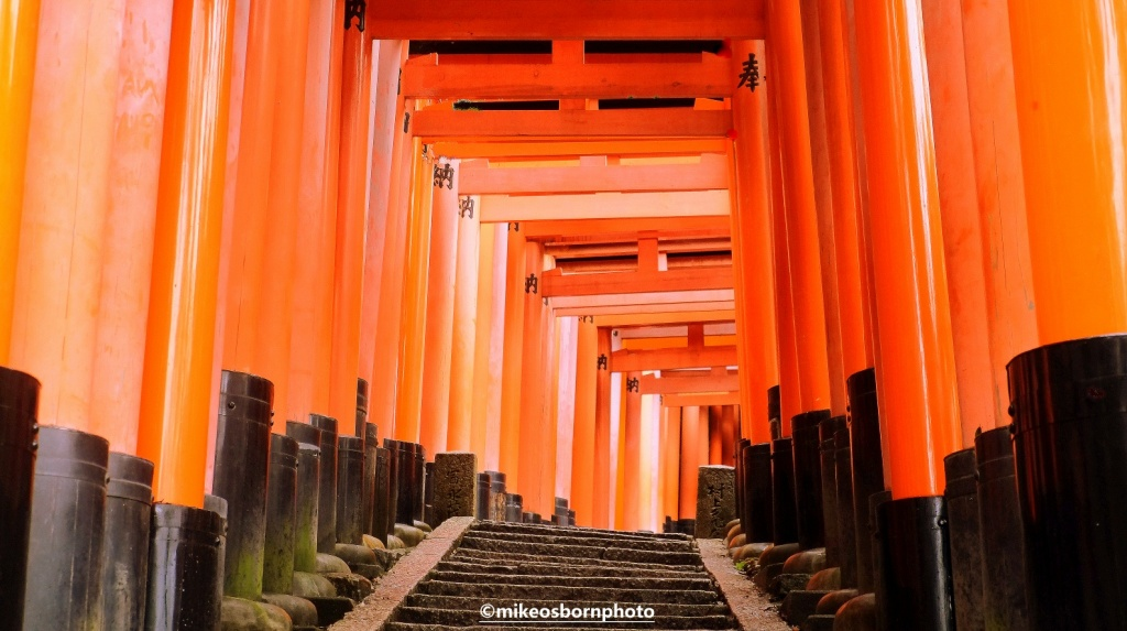 Red torii gates, Fushimi Inari Taisha, Kyoto, Japan