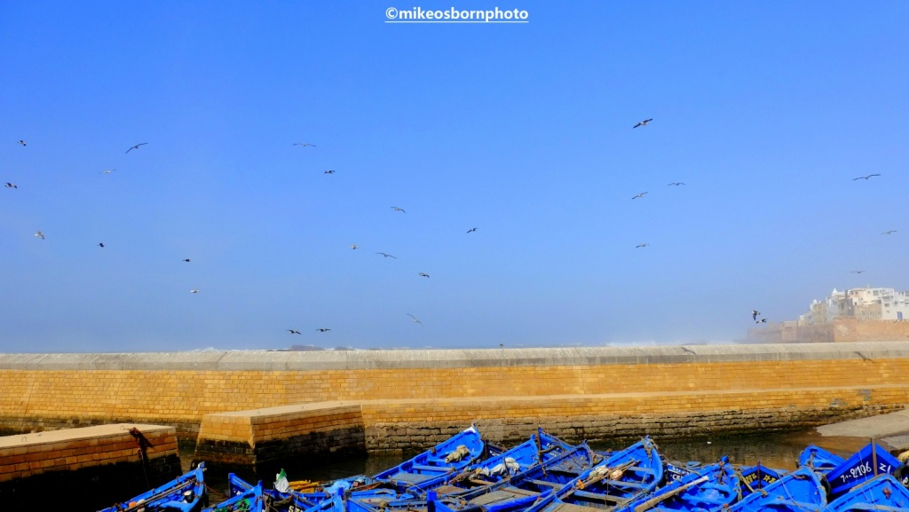 Blue boats and the sea wall at Essaouria, Morocco