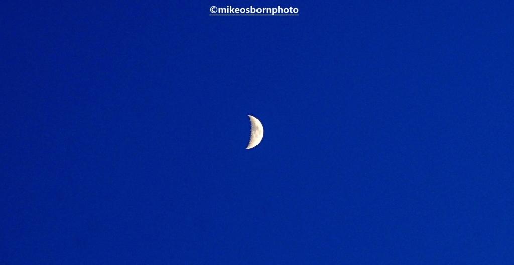 Plump crescent moon