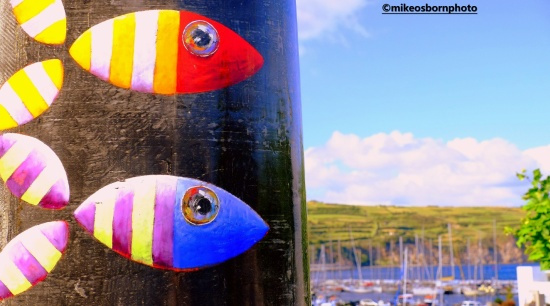 Fish artwork in the port of Horta, Azores