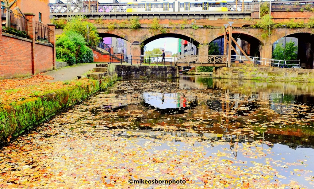 By the canal at Castlefield, Manchester in autumn