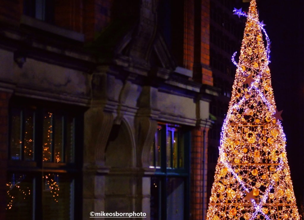 Illuminated Christmas tree in Manchester