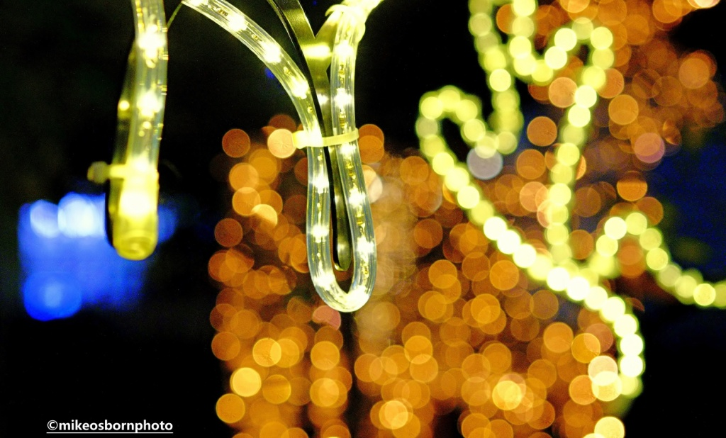 Reindeer and Christmas gold lights in Spinningfields, Manchester
