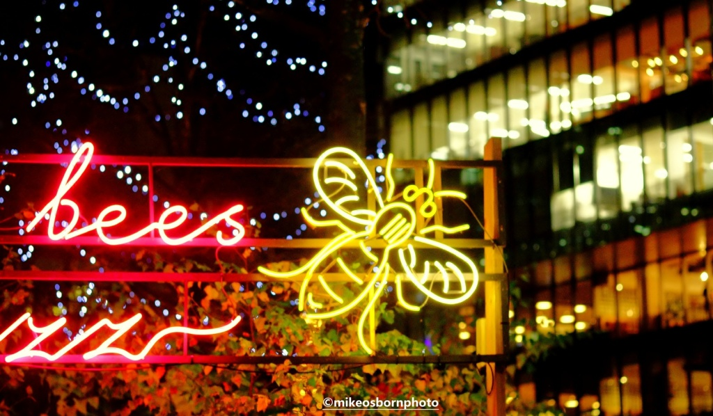 Manchester bee lights in Spinningfields, Manchester