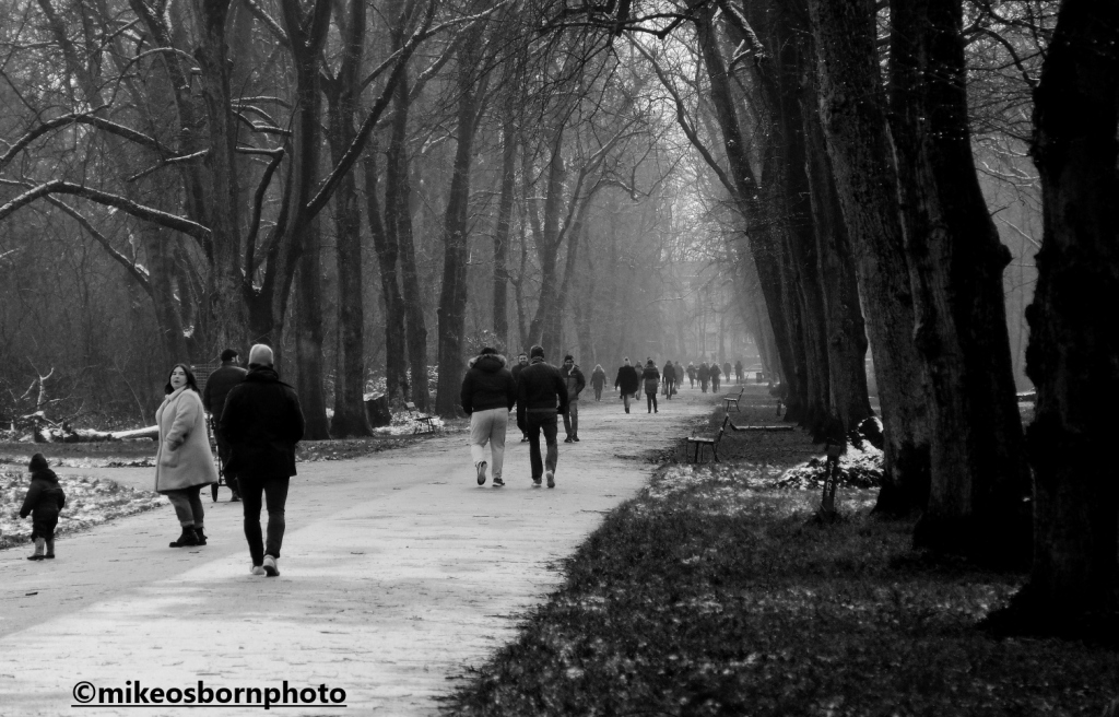 Walkers along the tree-lined avenue, Alexandra Park, Manchester