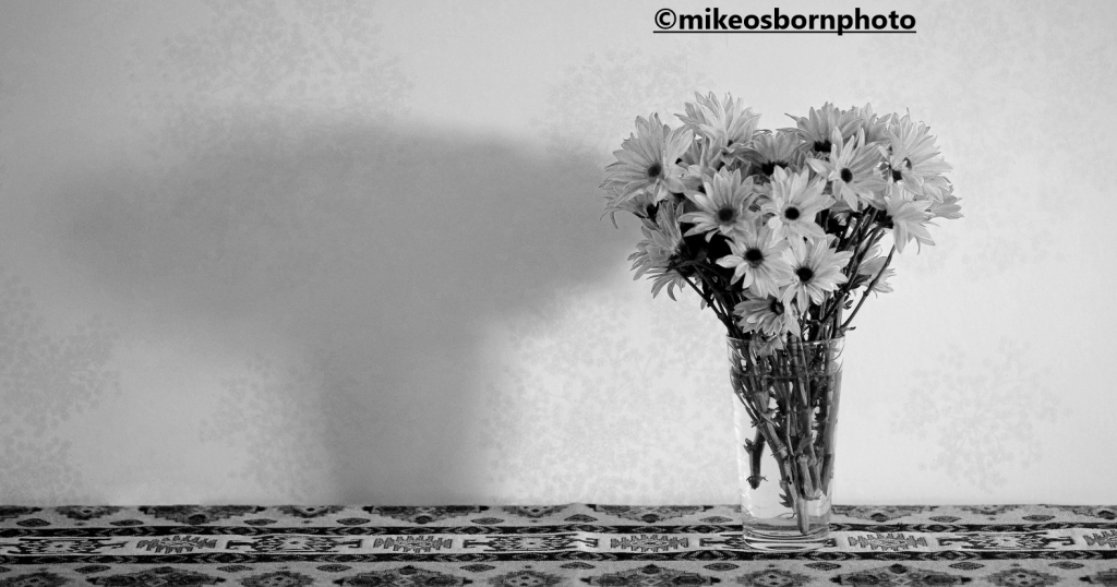 A vase of chrysanthemums in black and white