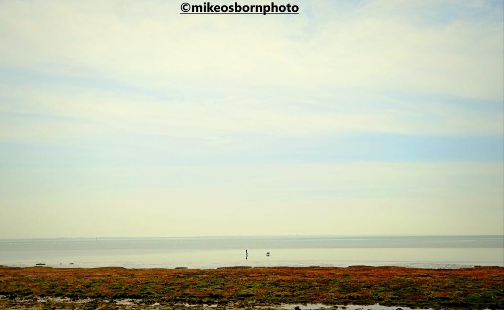 Man walks his dog on Fylde Coast
