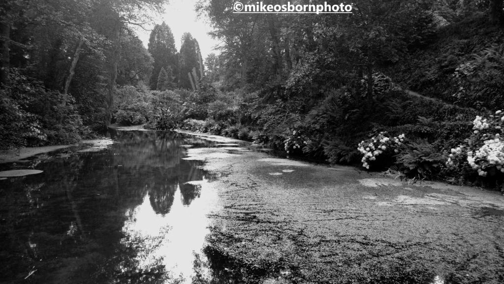 The riverside at Bodnant Garden, Wales